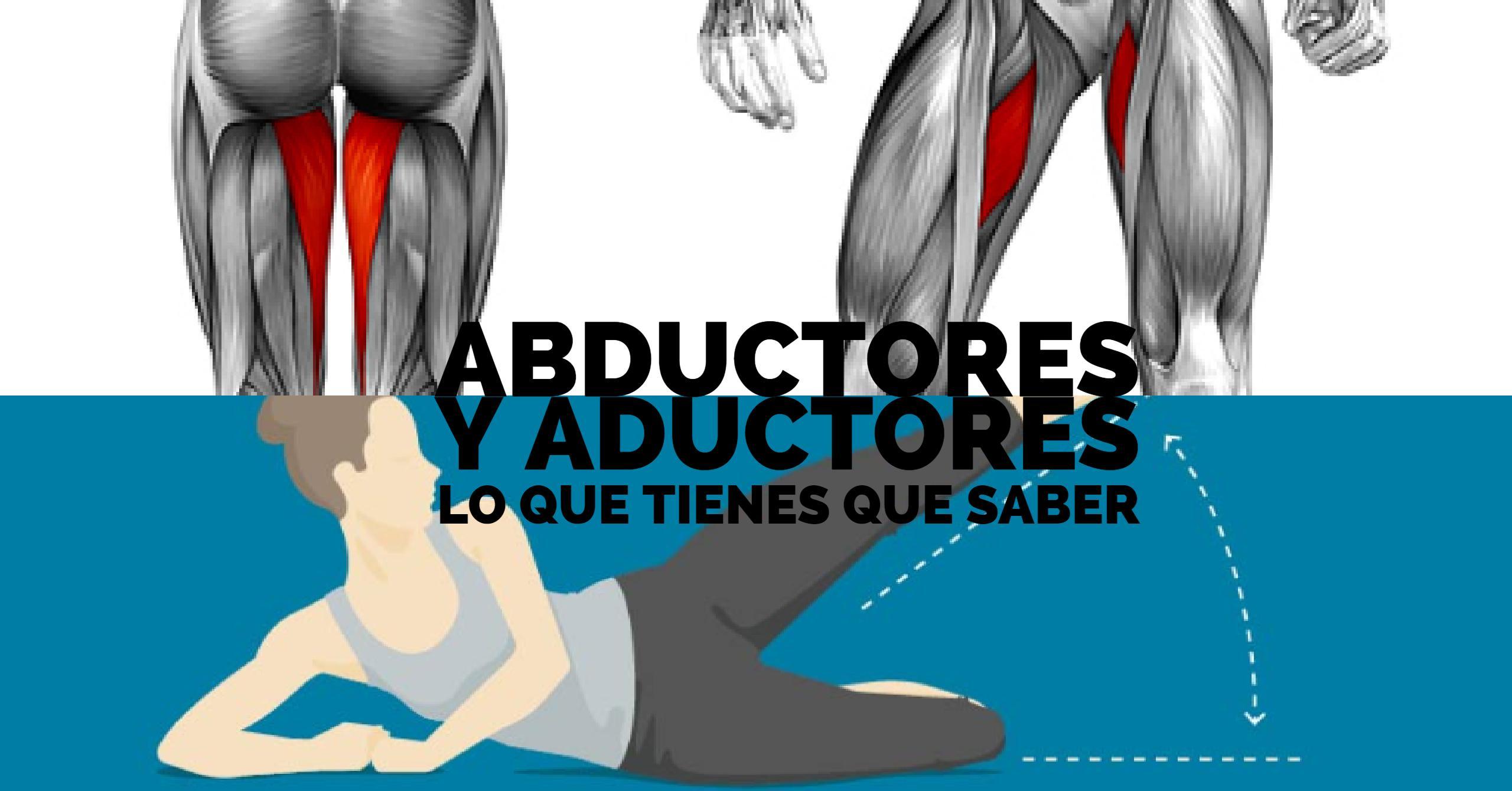 Músculos ADUCTORES y ABDUCTORES: Funciones, diferencias y ejercicios ...