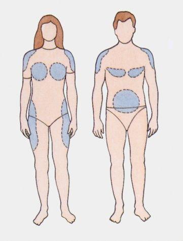 distribución grasa