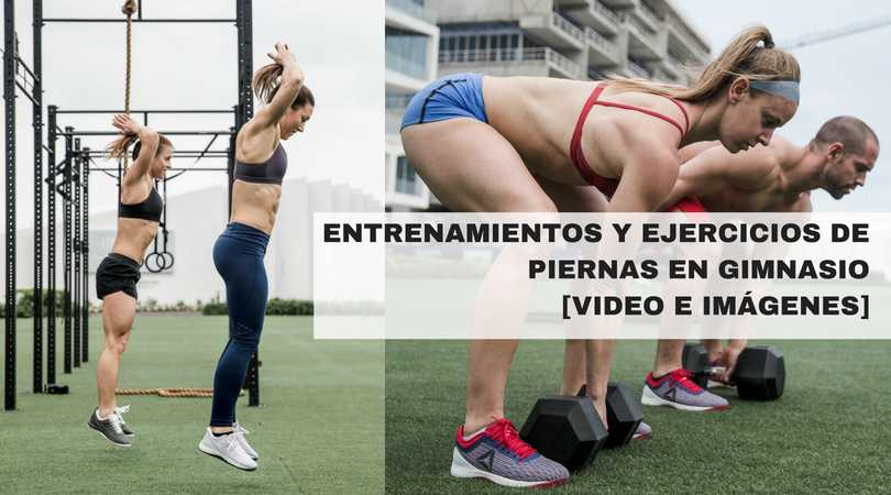 Que ejercicios hacer en el gym para piernas